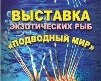 """В """"Акжолтае"""" живут экзотические рыбы"""