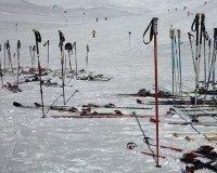 14 февраля на острове Татышев состоится вечерняя лыжная гонка