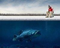 Тюменские рыбаки выйдут на лед