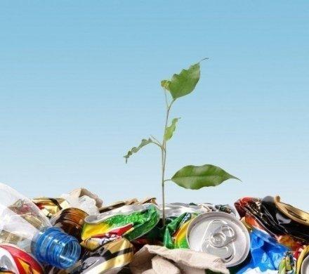 В Сургуте начнут перерабатывать мусор