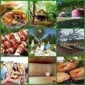 Весенний пикник объявляем открытым!