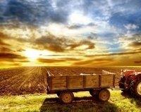 В предстоящие выходные площадь 1905 года займут реализаторы сельскохозяйственной продукции