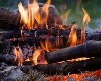 Разводить костры в лесах Тольятти запрещено
