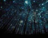 5 мая жители России смогут увидеть звездный дождь