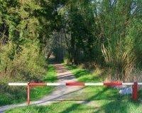 В лесу Тольятти установят шлагбаумы и запрещающие знаки