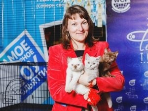 Люди в городе: питомцы и их хозяева на выставке кошек