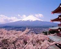Завтра в Тольятти состоится «Вечер японской культуры»