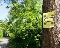 На выходных челябинцев приглашают на крутую прогулку с приключениями