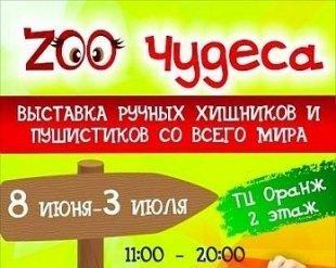 """Выставка животных """"ZOOчудеса"""" в ТЦ """"ОРАНЖ"""""""