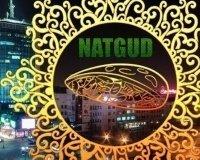 В Челябинске откроется первая фалафельная NutGud