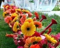 С 19 августа в Уфе пройдет 7 фестивалей цветов