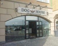 """Сосисочки и булочки. На Верхней Набережной открылось кафе хот-догов """"Dog House"""""""