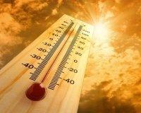 Аномально жаркая погода продлится в Тольятти до следующей недели