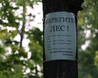 В Тольятти объявлена чрезвычайная пожароопасная обстановка