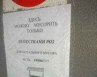 В Белгороде можно мусорить исключительно лепестками роз