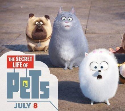 Кто ты из мультика «Тайная жизнь домашних животных»?