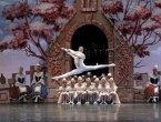Бесплатный мастер-класс по классическому танцу от Артёма Белова