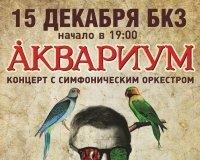 В Красноярск приезжает Борис Гребенщиков