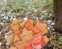 История: 10 листьев с «Выбирай добро» в Ижевске