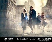 Челябинцы увидят «Фантастических тварей» на день раньше премьеры!