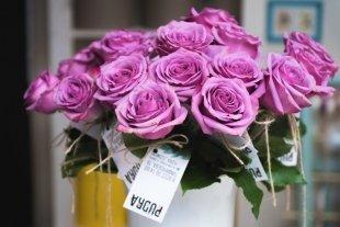 Открытие цветочной мастерской Pudra