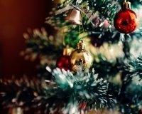 Официальное открытие городской елки состоится 28 декабря