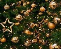 В городе проходит фестиваль-конкурс на самую красивую новогоднюю ёлку