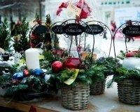 В саду «Эрмитаж» пройдет «Снежная ярмарка».