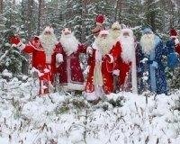 В Сокольниках пройдут «Игры Дедов Морозов».
