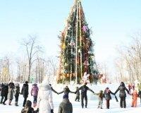 В кафе-кемпинге М5 пройдет Большая Рождественская ёлка