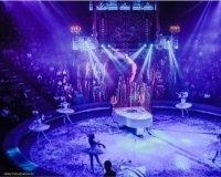 28 января в Казани стартуют гастроли шоу Гии Эрадзе «Королевский цирк»