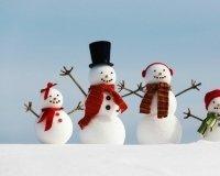 В Сокольниках пройдет Фестиваль снеговиков.