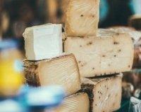 Холдинг Bellini Group открывает завод по производству сыра