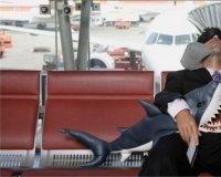 Возможно, запретят проносить в самолет алкоголь из duty free