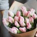 Невероятные пионовидные тюльпаны в бумаге тишью