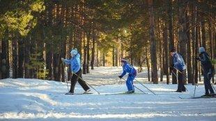 5 трасс для беговых лыж в городе
