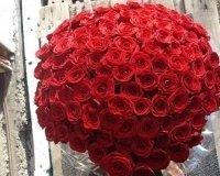 Жительницам Тольятти предложили взять в аренду 101 розу