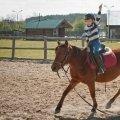 Развивающая верховая езда для детей 3-8 лет