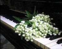 Премьера концертной программы «Весна» в исполнении Ирады Николаевой
