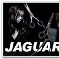 Горячие ножницы Jaguar (Ягуар) TC 400