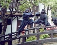 В Кургане открывается первый ниндзя-парк