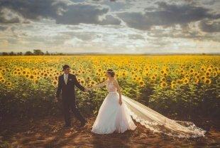 4 идеи для выездной регистрации брака в Уфе