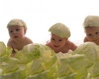 Югра на 10 месте по рождаемости среди регионов России