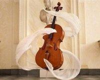 Бесплатный концерт кафедры альта, виолончели и контрабаса