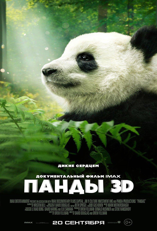 free-movie-panda-teen-girl-porn