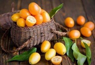 Блоги: о полезной еде