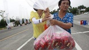 Южная Корея отправила Северной 200 кг печенек на воздушных шариках