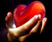 13 сентября красноярцы смогут поучаствовать в донорской благотворительной акции