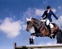 В выходные в Челябинске соревнования по конному спорту и праздник лошадей