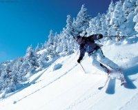 В Красноярске начали строить горнолыжную трассу